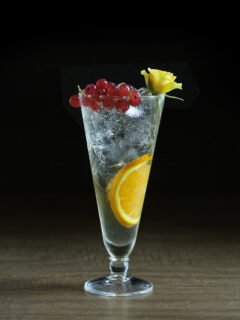 a cocktail in a pilsner glass with an orange slice and currants.