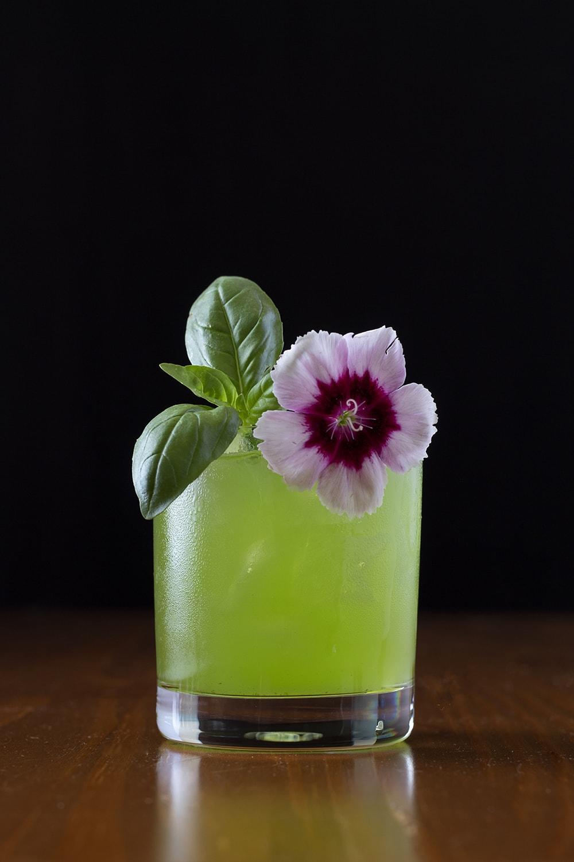 gin basil sour