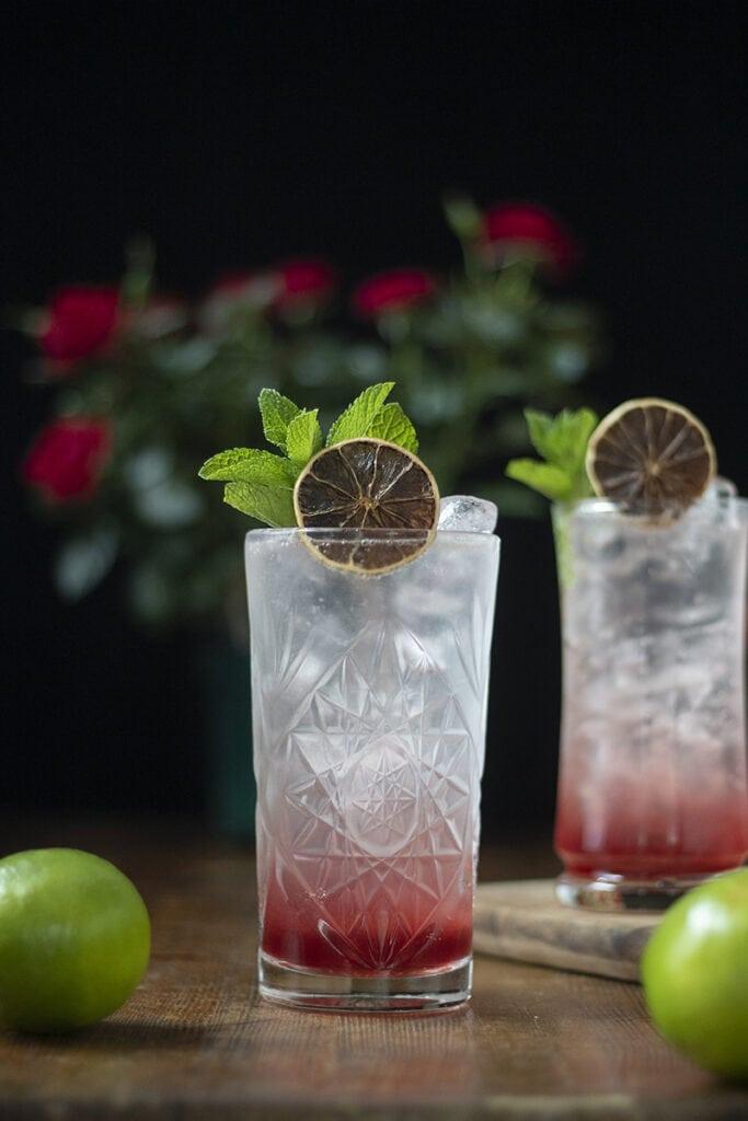 cranberry-aquavit-and-tonic-01