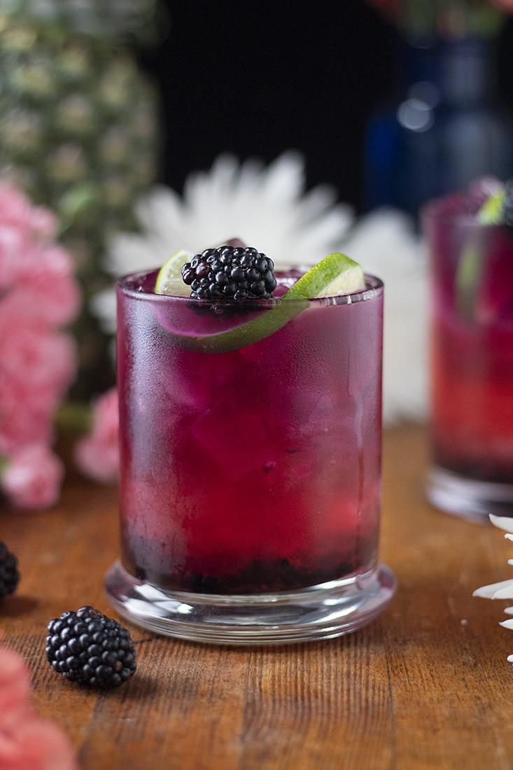 blackberry paloma mocktail cocktail