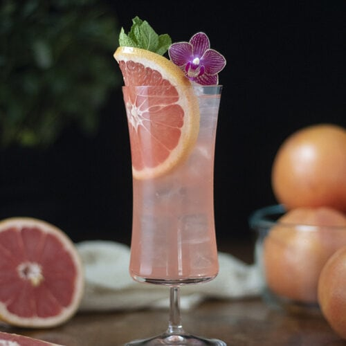 winter-sea-breeze-grapefruit-and-white-cranberry-cocktail-01