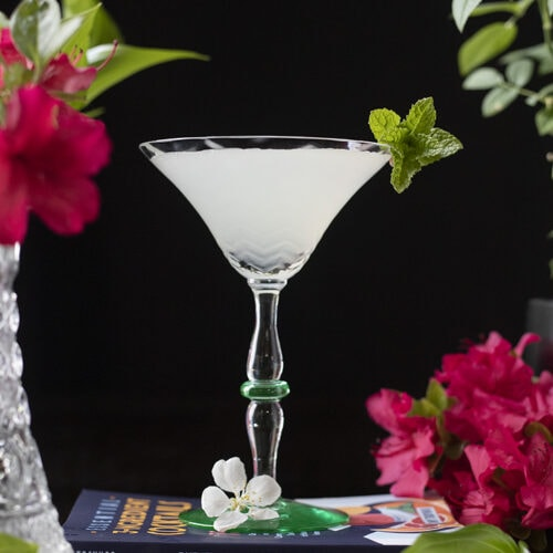 a white cocktail in a martini glass surrounded by green leaves and red tropical flowers on a black background