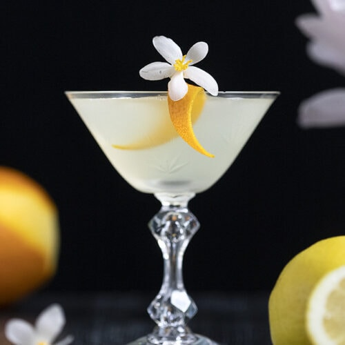 white cocktail in a vintage coupe glass with an orange twist
