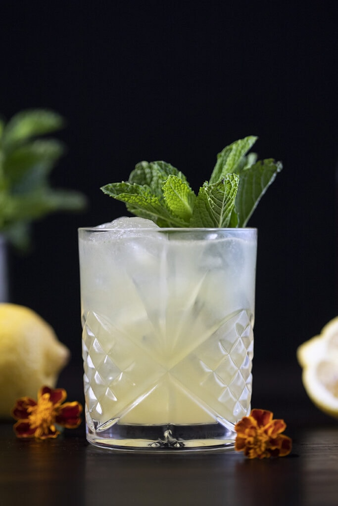cocktail in a rocks glass garnished with mint
