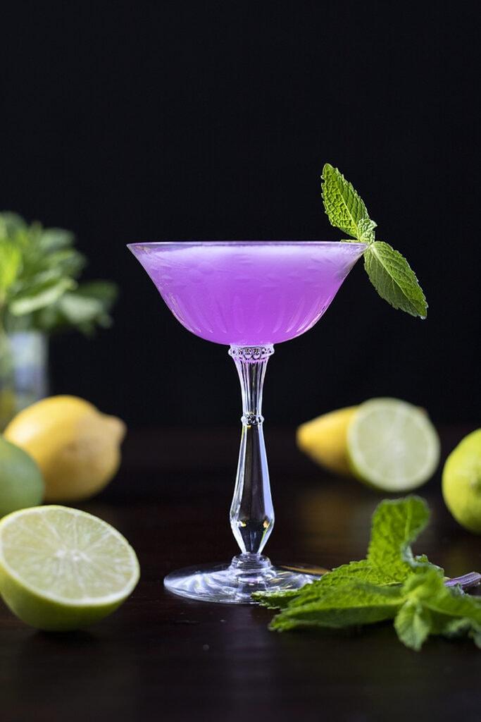 purple cocktail with citrus fruits