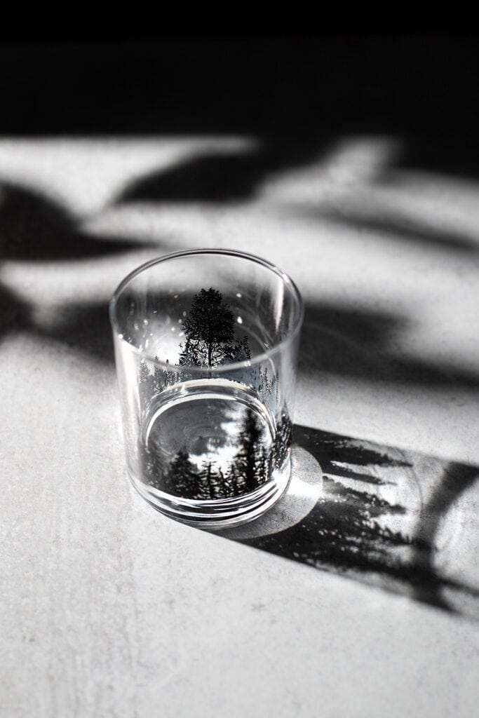 a rocks glass with pine tree silhouettes casting a shadow on a white table.