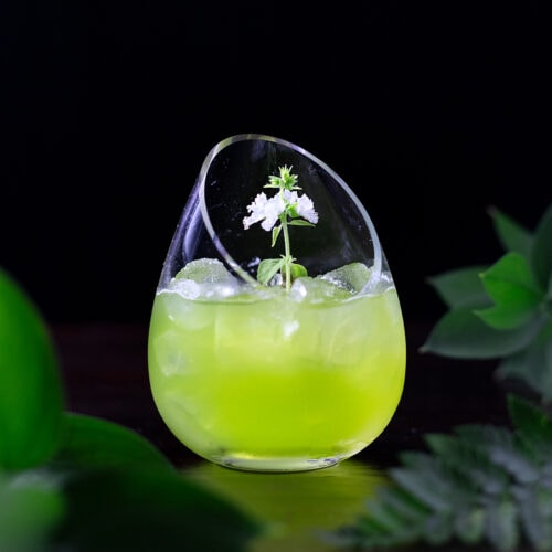 a green cocktail in a fancy stemless glass with a white flower.
