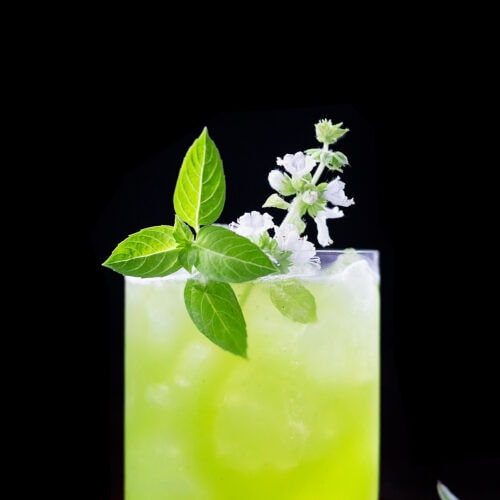 a bright green drink in a rocks glass with a white basil blossom.