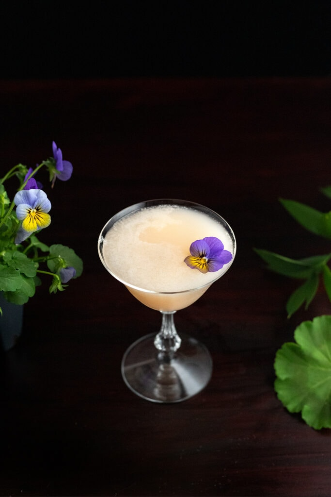 Army and Navy cocktail with an edible flower.